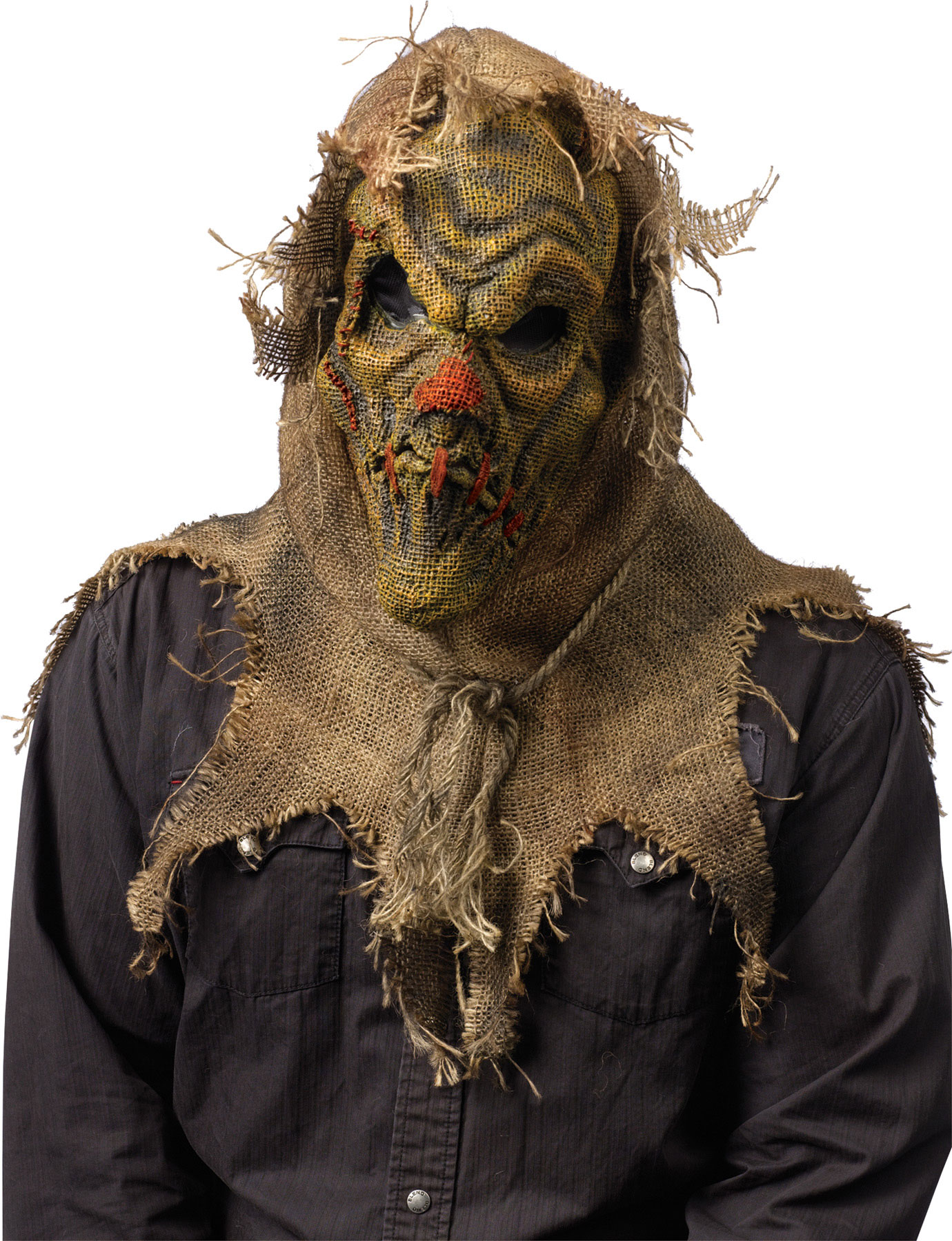 Featured Image for Scarecrow Mask Natural